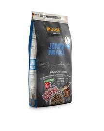 BELCANDO Junior Maxi L-XL 1 kg sausas maistas didelių veislių šunims nuo 4 mėnesių amžiaus