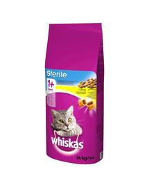 WHISKAS Sterile 14kg - sausas kačių ėdalas, spo sterilizacijos  vištiena +  skanėstas NEMOKAMAI