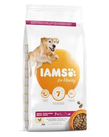 IAMS For Vitality Senior Large Breed Chicken 12 kg