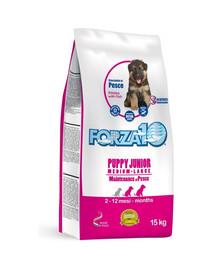 FORZA10 M/L Maintenance Puppy Junior su sausu žuvų maistu vidutinių ir didelių veislių šuniukams 15 kg