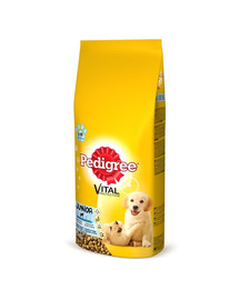PEDIGREE Junior 15kg (vidutinės veislės) - sausas šunų maistas su vištiena ir ryžiais+ Dr PetCare MAX Biocide Collar OAntkaklis nuo blusų ir vabždžių šunims vidutinės veislės  60 cm NEMOKAMAI