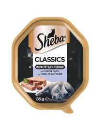 SHEBA Classics 85g*22 su veršiena ir vištiena - šlapias maistas katėms su paštetu + 6x50g Fresh & Fine FREE
