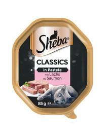 SHEBA Classics 85gx22 su lašiša - šlapias kačių maistas paštete + 6x50g Fresh & Fine NEMOKAMAI