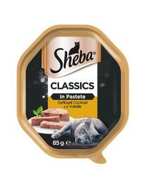 SHEBA Classics 85g*22 Paukštienos kokteilis - šlapias maistas katėms paštete + 6x50g Fresh & Fine NEMOKAMAI
