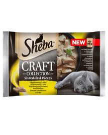 SHEBA konservai 52x85g Craft Collection Paukštienos skoniai - šlapias kačių maistas padaže (su paukštiena, vištiena, kalakutiena, antiena) + dubuo nemokamai