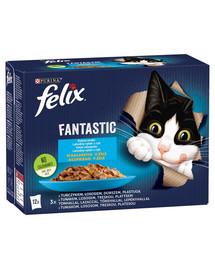 FELIX FANTASTIC Žuvies skoniai drebučiuose(Tunas, lašiša, menkė, plekšnė) 72x85g šlapias kačių maistas