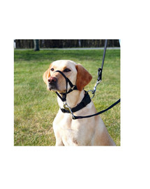 Trixie Top Trainer juodas šuns antsnukis M 27 cm