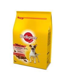 PEDIGREE Vital Protection sausas maistas šunims su jautiena ir daržovėmis 2 kg x6