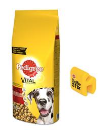 Pedigree Vital Protecion ėdalas su jautiena suagusiems didelių veislių šunims 15 kg + PEDIGREE SlefieSTIX + DentaSTIX Studios