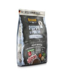 BELCANDO Finest Grain Free Puppy Poultry 12.5 kg sausas maistas šuniukams