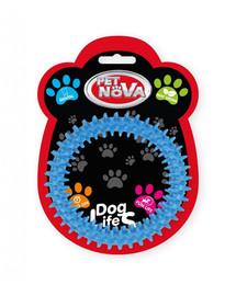 PET NOVA DOG LIFE STYLE Ringo dental 12,5cm, mėlynas, mėtų aromatas