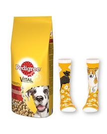 Pedigree Vital Protecion ėdalas su jautiena suagusiems didelių veislių šunims 15 kg + PEDIGREE kojinės