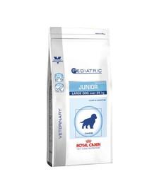 ROYAL CANIN Vcn junior large dog - 14 kg