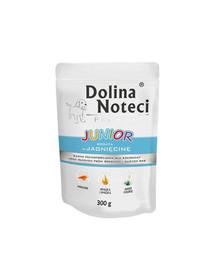DOLINA NOTECI Premium Junior su ėriena 300 g