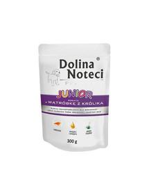 DOLINA NOTECI Premium Junior su triušienos kepenimis 300 g
