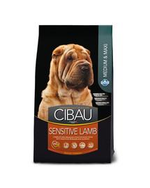 CIBAU Sensitive Lamb Medium & Maxi 12 kg + 2 kg NEMOKAMAI