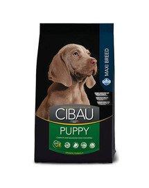CIBAU Maxi Puppy 12 + 2 kg NEMOKAMAI