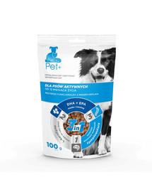 thePet+ Dog Active Treat skanėstai 100 g