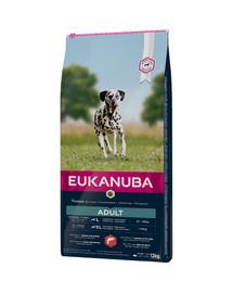 Eukanuba Adult Salmon & Barley All Breeds 12 kg