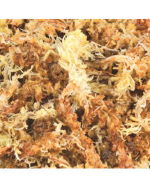 Trixie Sphagnum-Moss samanų pagrindas 100 g