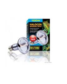 Hagen Exo Terra lempa Sun Glo 100 W Halogen