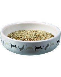 Trixie keramikinis dubenėlis katės žolei 15 X 4 cm
