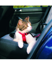 Trixie petnešos automobilyje katėms