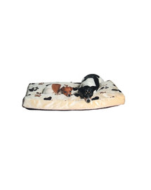 Trixie guolis smėlinis su pėdutėmis 140 X 100 cm