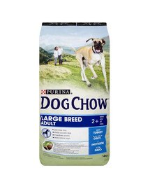 Purina Dog Chow Adult Large Breed su kalakutiena 14 kg