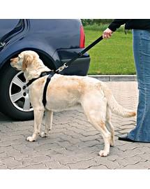 Trixie šuns saugos diržas su petnešomis L