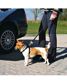 Trixie šuns saugos diržas su petnešomis M