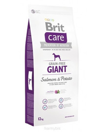 BRIT Care Dog Grain-Free Giant Salmon&Potato 1kg