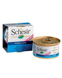Schesir tunas su alaviju kačiukams 85 g