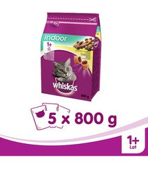 WHISKAS Indoor kuřecí 800G X5