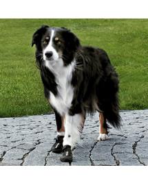 Trixie apsauginiai batai Walker Active XL 2 vnt.