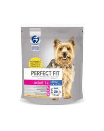 Perfect Fit Adult (1 metai) ėdalas praturtinas vištiena mažų veislių šunims 5 X 825 g