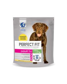 Perfect Fit Adult (1 metai) ėdalas praturtinas vištiena vidutinių ir didelių veislių šunims 5 X 825 g
