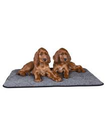 Trixie šildantis kilimėlis 60 X 40 cm