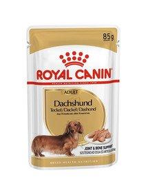 Royal Canin Dachshund Adult 12 X 85 g