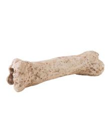 Exo Terra slėptuvė dinozauro kaulas