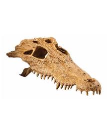 Exo Terra slėptuvė krokodilo kaukolė