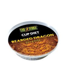 Exo Terra Bearded Dragon Adult maistas suaugusiai barzdotojai agamai 6X60 g