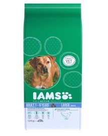 IAMS ProActive Health Adult Large Breed Chicken 3 kg