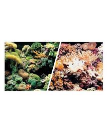 HAGEN Aquarium dvipusis akvariumo fonas rifas arba koralai 45 cm x 7.5 m