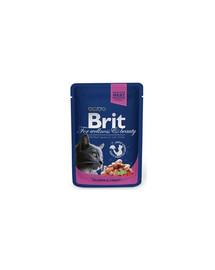 BRIT Premium konservai katėms Salmon&Trout 100g