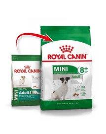 Royal Canin Mini Adult+8 8 kg