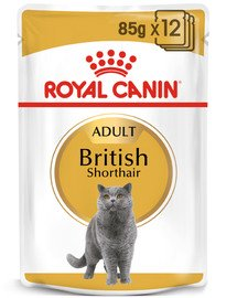 Royal Canin British Shorthair 85 g maišeliai 12 X 85 g