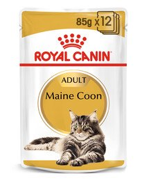 Royal Canin Mainecoon konservai 12 X 85 g