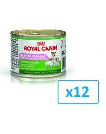 ROYAL CANIN Starter Mousse Mother & Babydog konservai 195 g x 12 vnt.