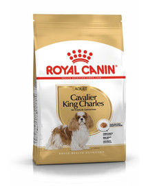 Royal Canin Cavalier King Charles Adult 1.5 kg